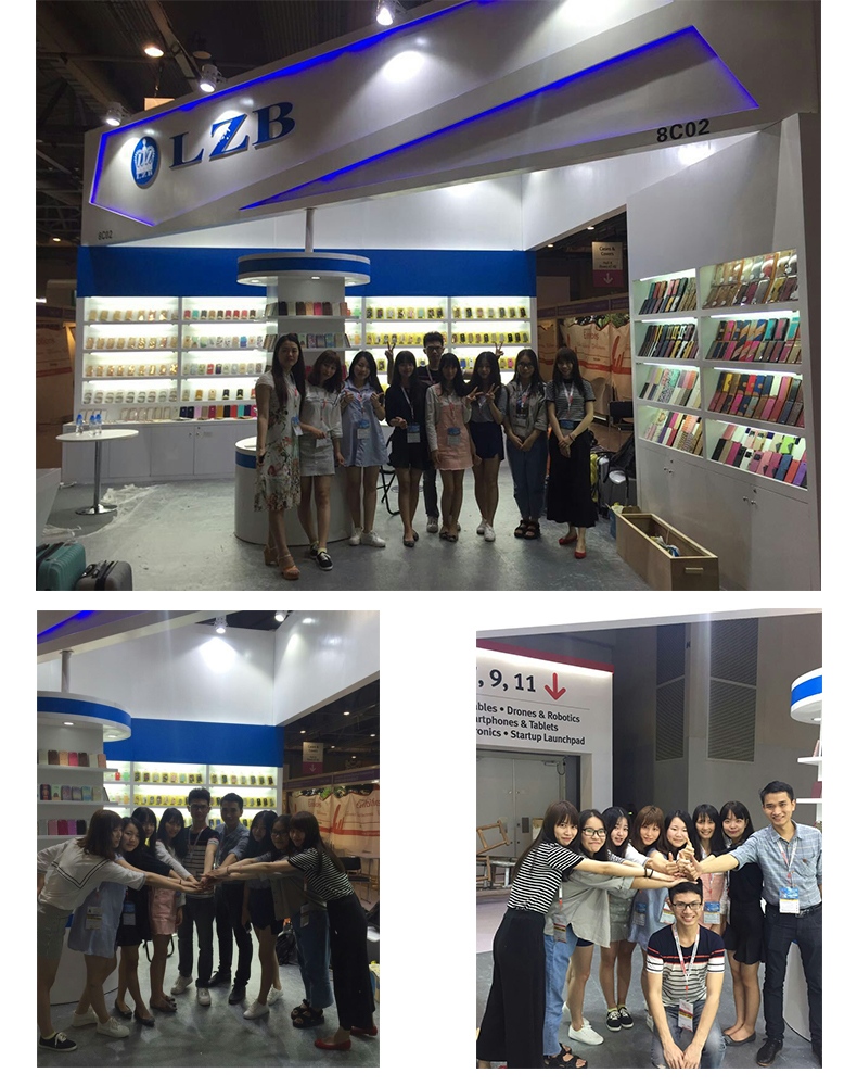 LZB-One of the biggest mobile phone accessories wholesaler 3